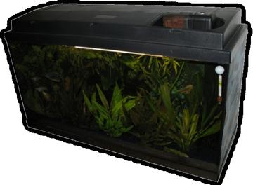 sourcevision aquaristik. Black Bedroom Furniture Sets. Home Design Ideas